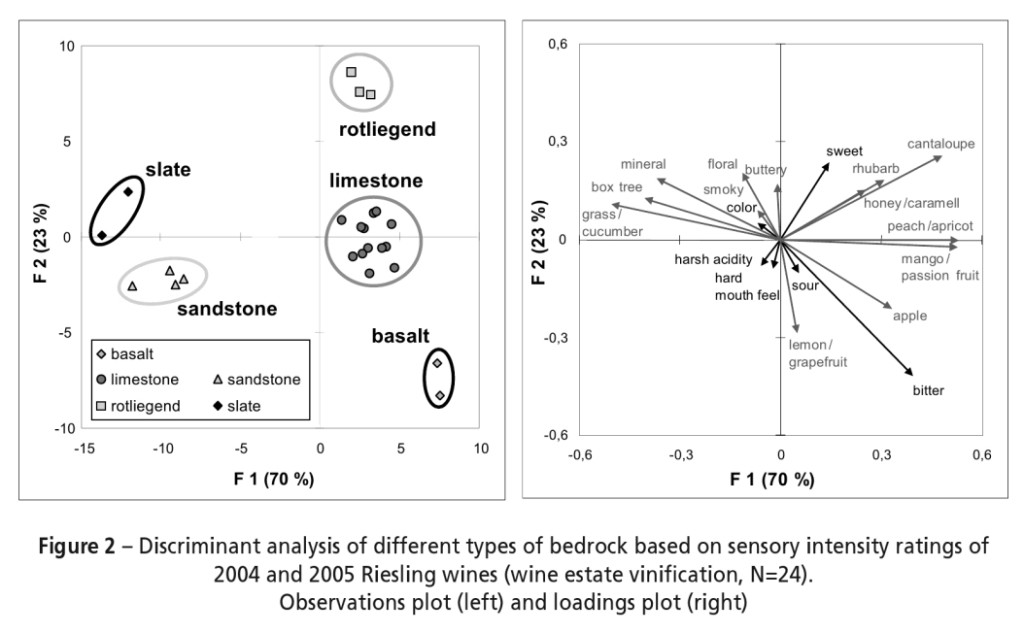 riesling_terroir_differences